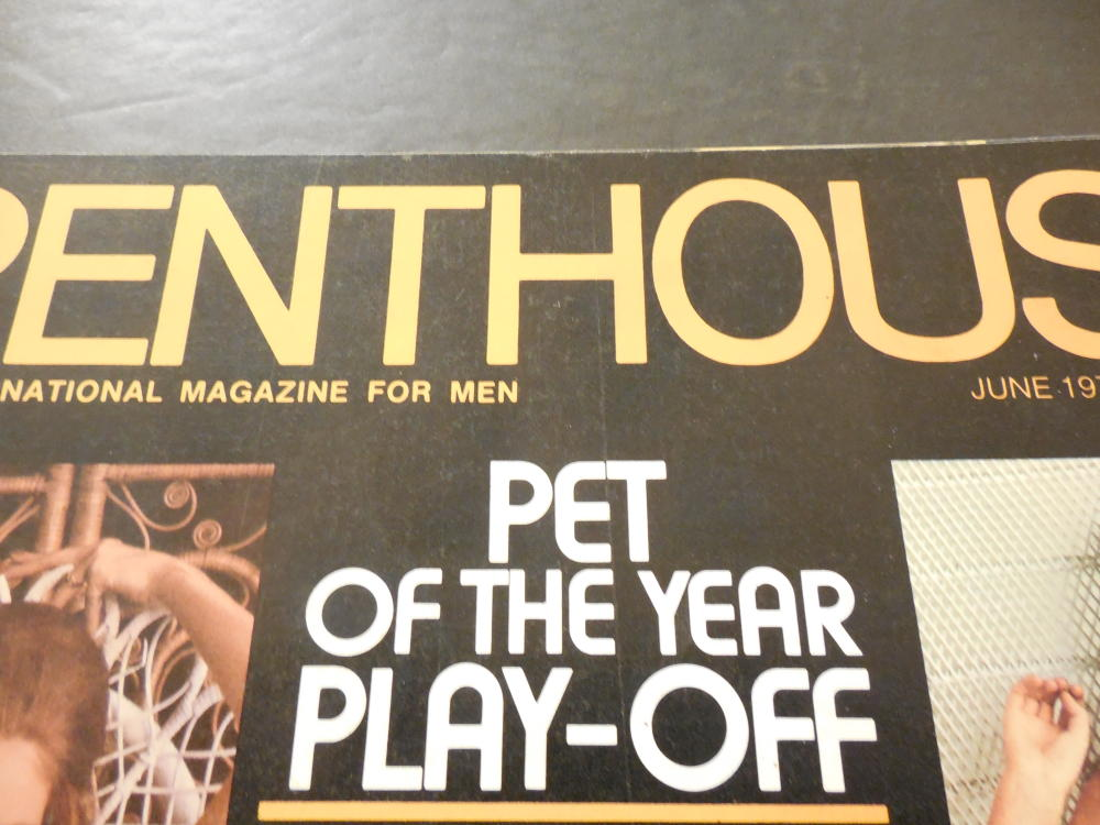 penthouse pet playoff